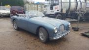 WOW Aston martin DB2 -  - NEWBURY - BERKSHIRE