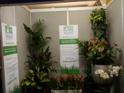 Office Planters - Let's Do Business - Eastbourne 2015 - Eastbourne - Sussex - Surrey - London