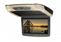 Vizualogic Roof Mount DVD WORCESTERSHIRE